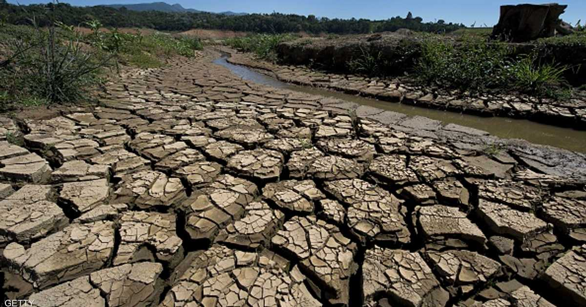 جفاف تاريخي يضرب محصول البن بالبرازيل