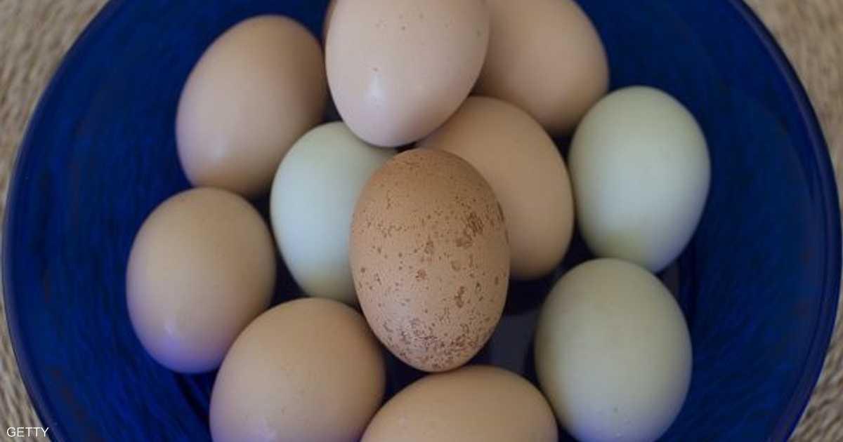 """تناول البيض """"ليس خطرا"""" على الصحة"""