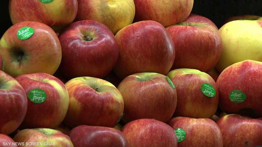دراسة: تناول الفواكه والخضروات بكثرة يحسن صحتك العقلية