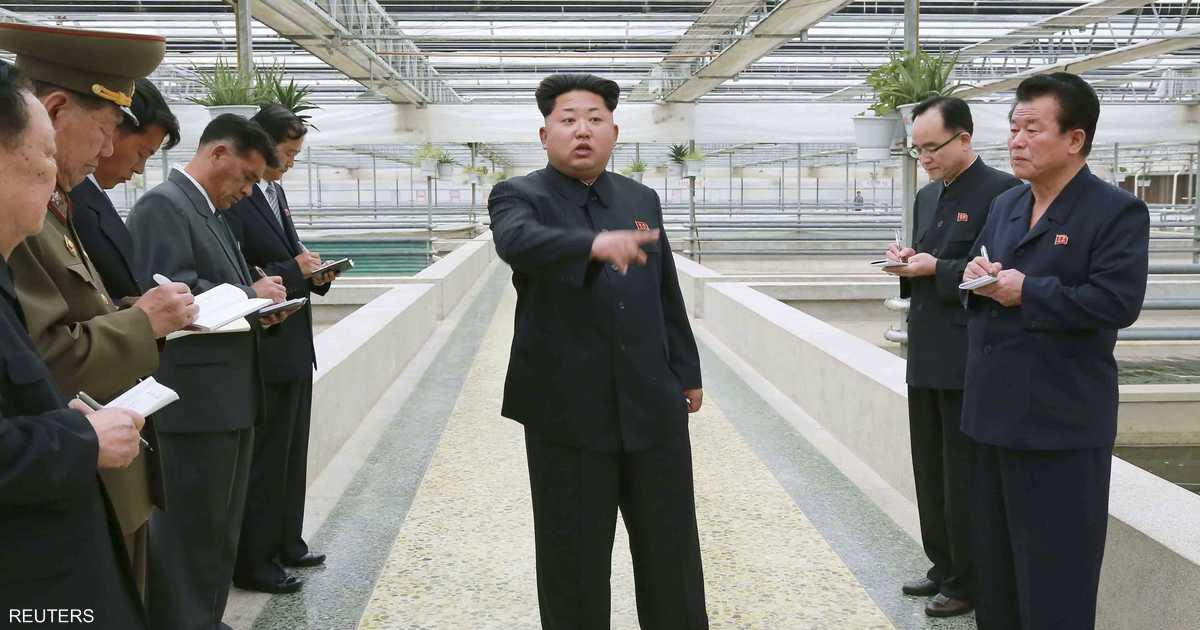 بسبب السلاحف.. كيم جونغ أون يعدم مديرا