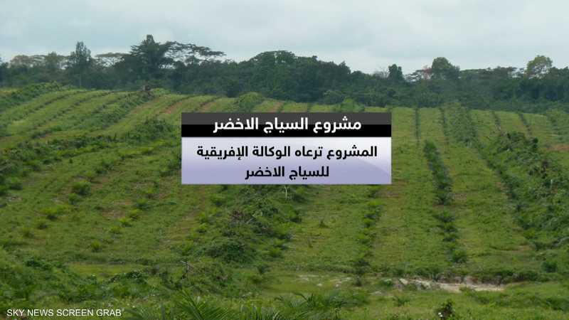 مشروع سوداني لزراعة آلاف الأشجار
