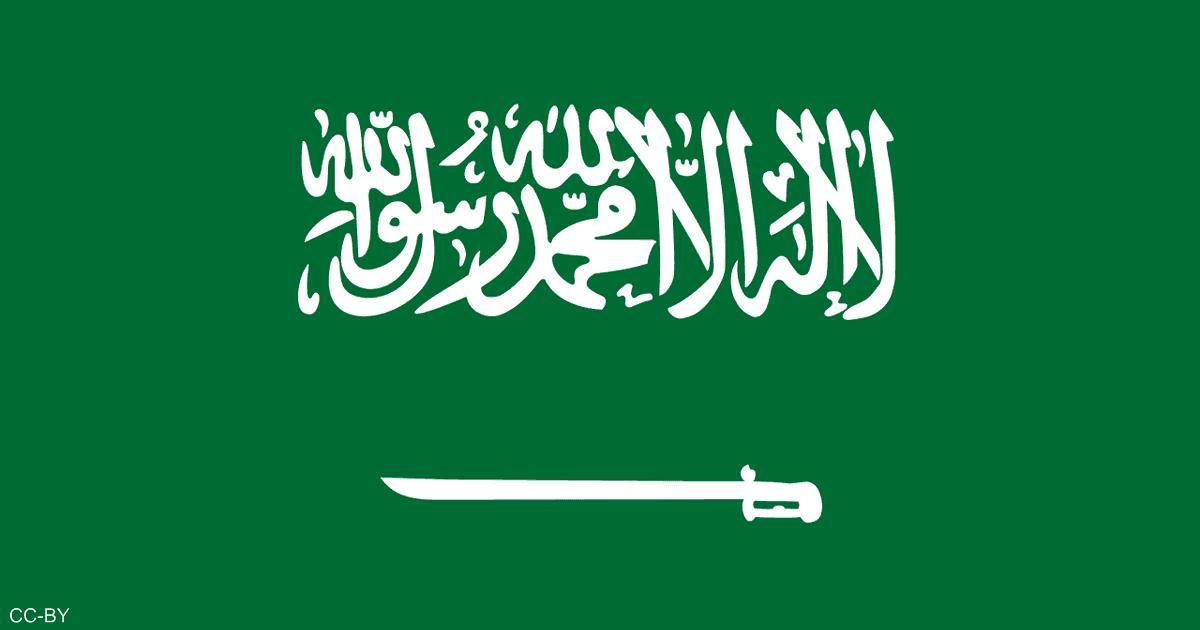 قطاعات جهاز  رئاسة أمن الدولة  السعودي الجديد   أخبار سكاي نيوز عربية