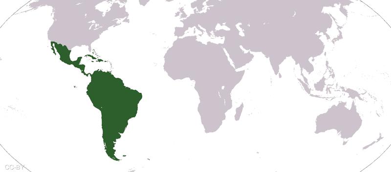 أميركا اللاتينية