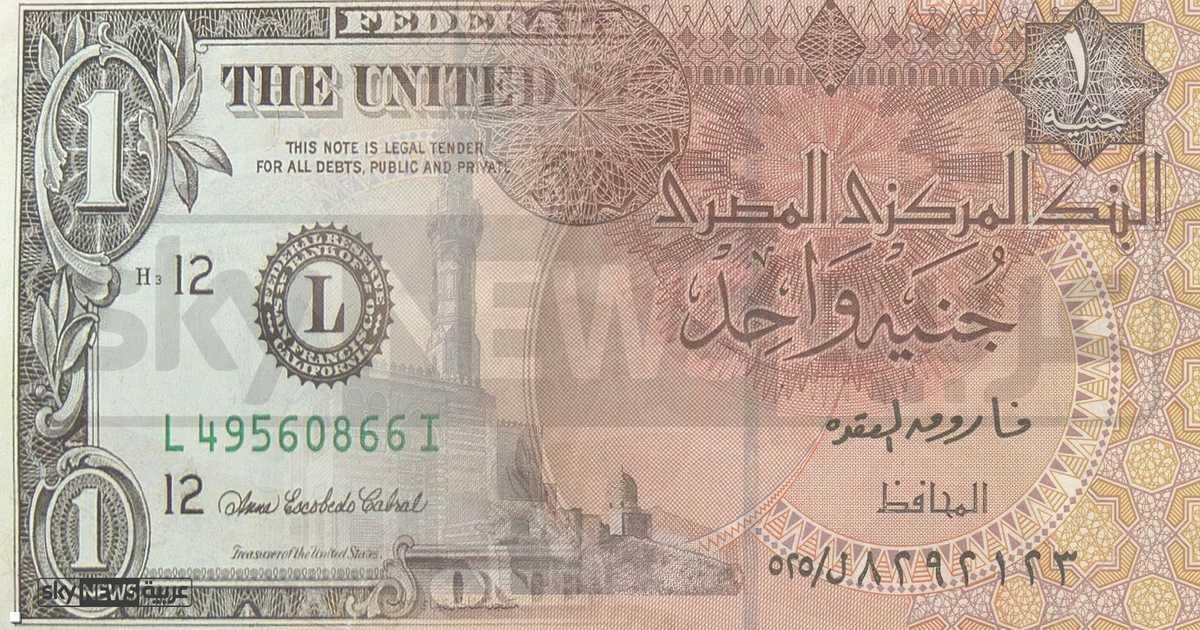 مصر.. ارتفاع مفاجئ للدولار مقابل الجنيه   أخبار سكاي نيوز عربية