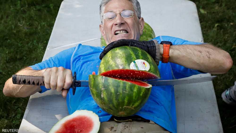 يجب أم يقطع البطيخ على بطنه