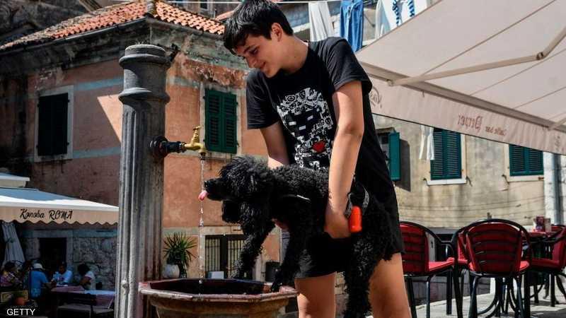 طفل يساعد كلب على الشرب في الجبل الأسود