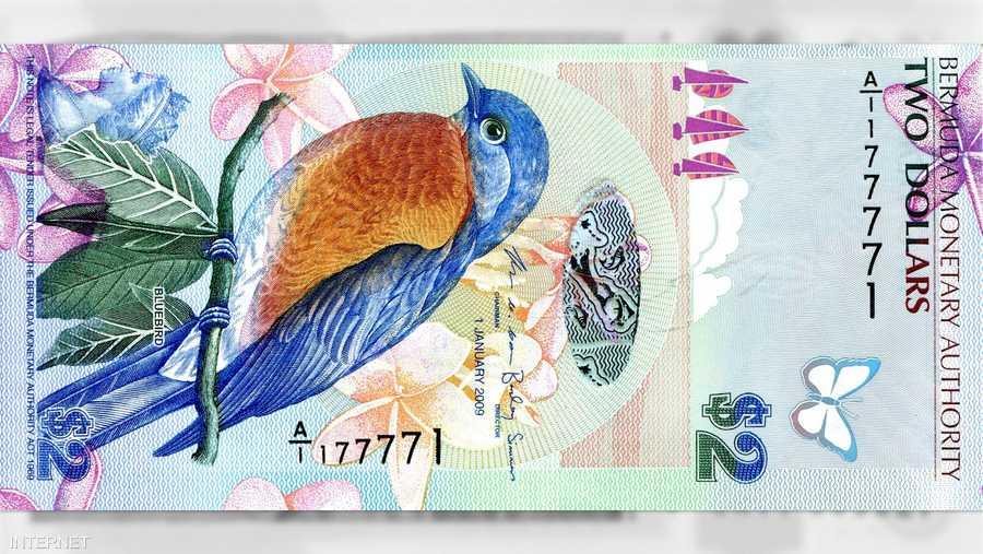 ورقة فئة دولارين من برمودا