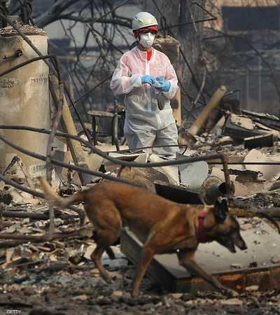 الحريق اندلع منذ الثامن من نوفمبر