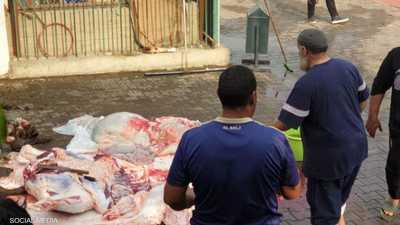 """بعد الإخفاقات المتتالية.. الأهلي المصري يلجأ إلى """"العجل"""""""