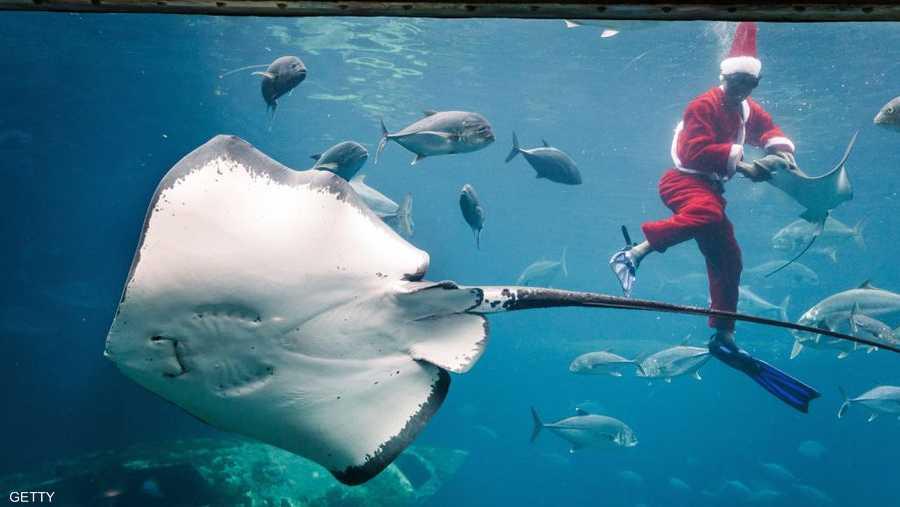 سانتا كلوز تحت الماء