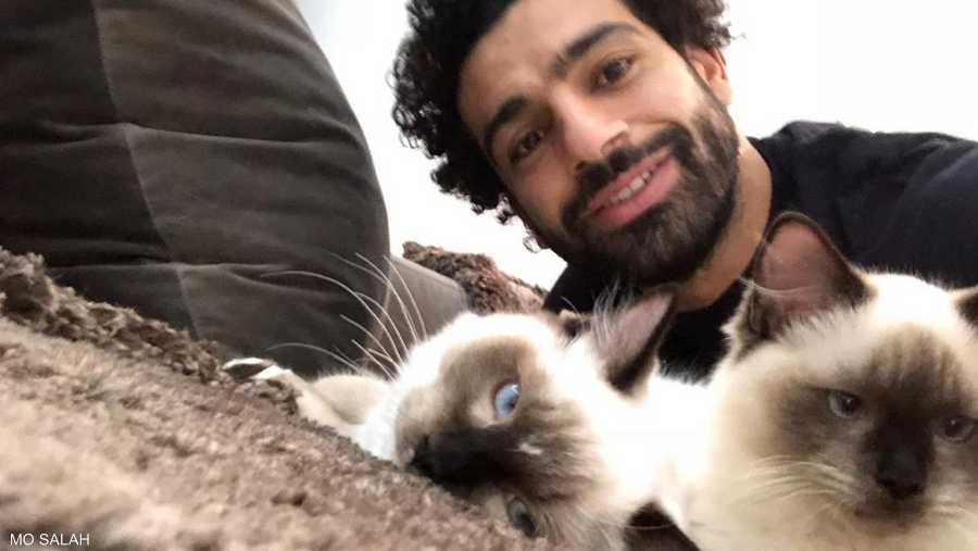 صلاح مع القطط