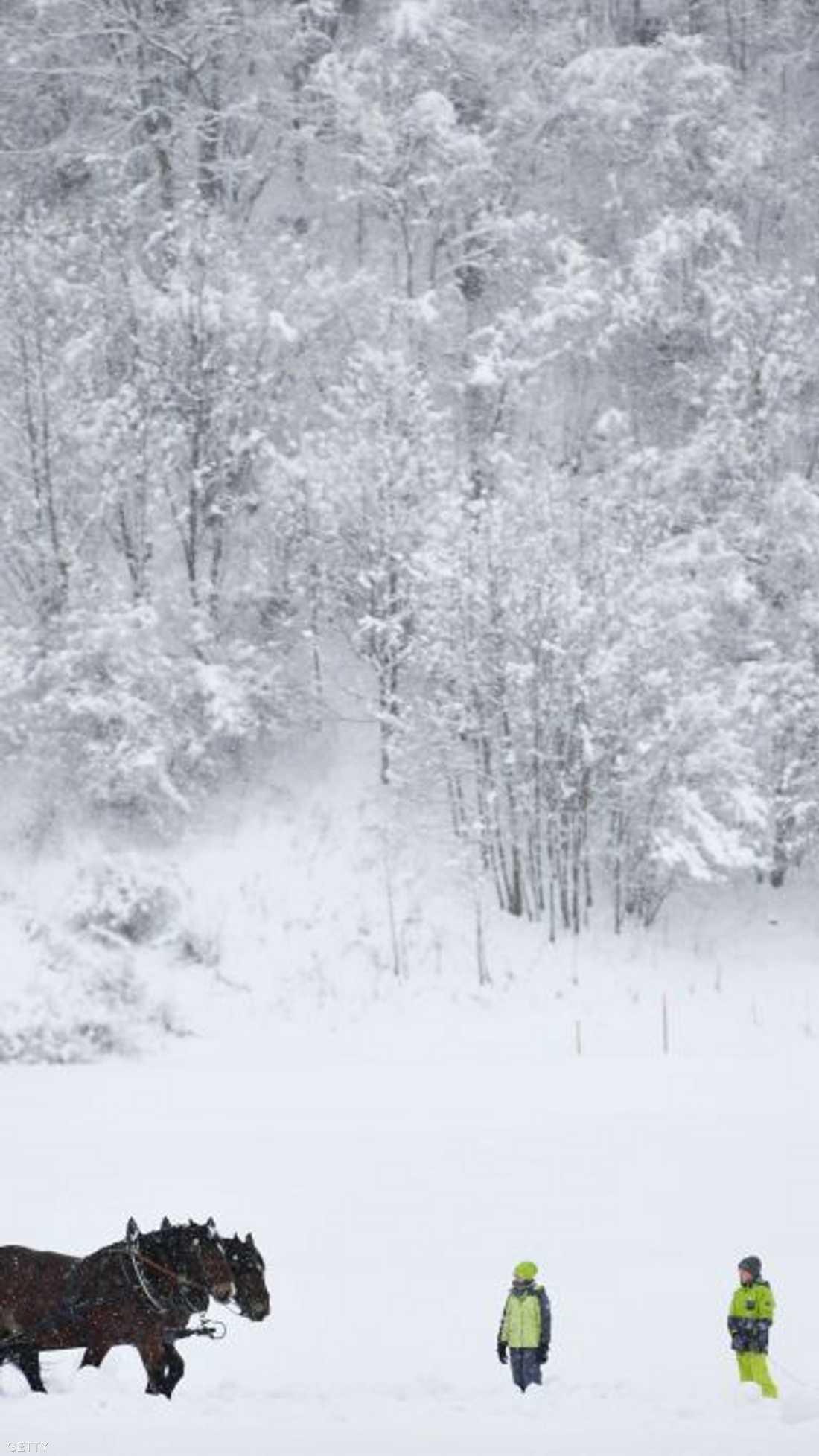 فصل الشتاء في النمسا