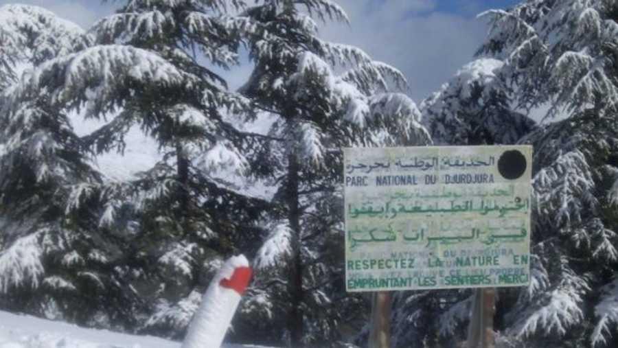 وهطلت في يناير 2018 ثلوج كثيفة على الجزائر للمرة الأولى منذ 4 عقود.