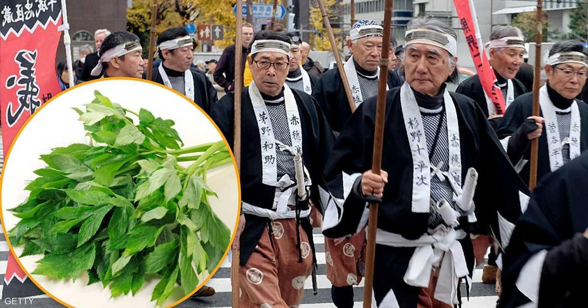"""نبتة الساموراي """"تبطئ الشيخوخة"""".. والسر في الـ""""دي إم سي"""""""