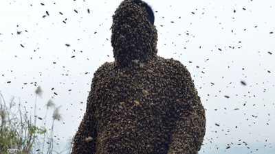 احذروا التقليد.. يجمع العسل ويأكله من النحل مباشرة