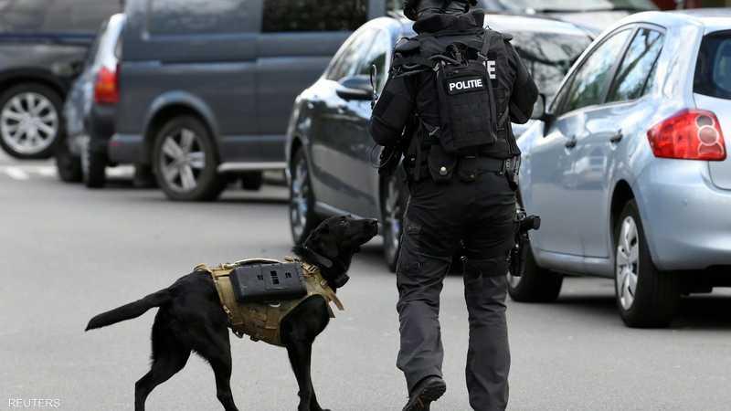 كلب بلاك لابرادور مجهز بسترة واقية شارك في ملاحقة المهاجم