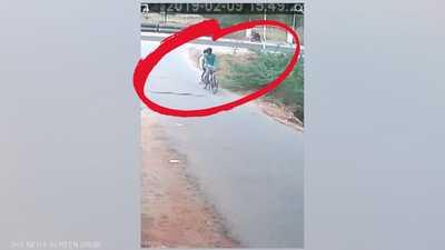 كوبرا قاتلة تفاجئ مستقلي دراجة.. وثانية حسمت كل شيء