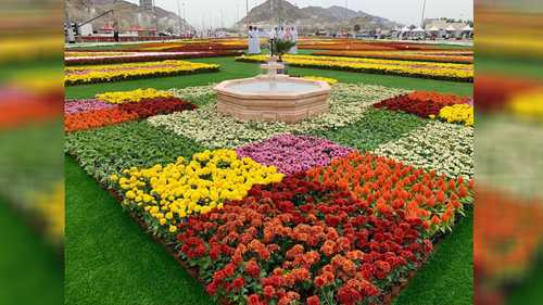 حظي زوار مهرجان الزهور، بفرصة لمشاهدة مناظر خلابة، كسجادة الزهور هذه، ذات الطابع الإسلامي، والتي احتوت على أكثر من مليون زهرة طبيعية متنوعة.