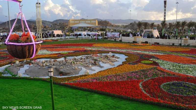 ورد مدينة الطائف يعد من أجود الأنواع في العالم