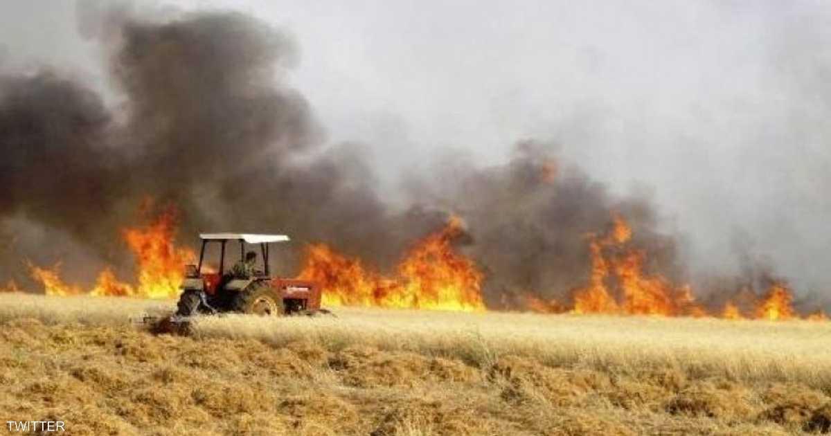 """الحرائق """"المفتعلة"""" تستمر بالتهام الأراضي الزراعية في العراق"""