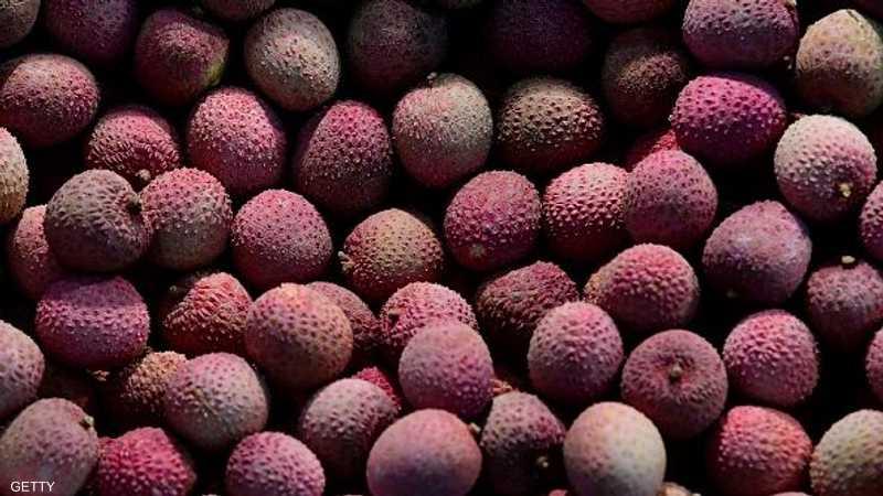 ينتشر المرض خلال فترة حصاد الليتشي في مايو ويونيو من كل عام.