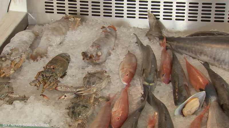 الطعام البحري.. فوائد كبيرة لصحة الإنسان