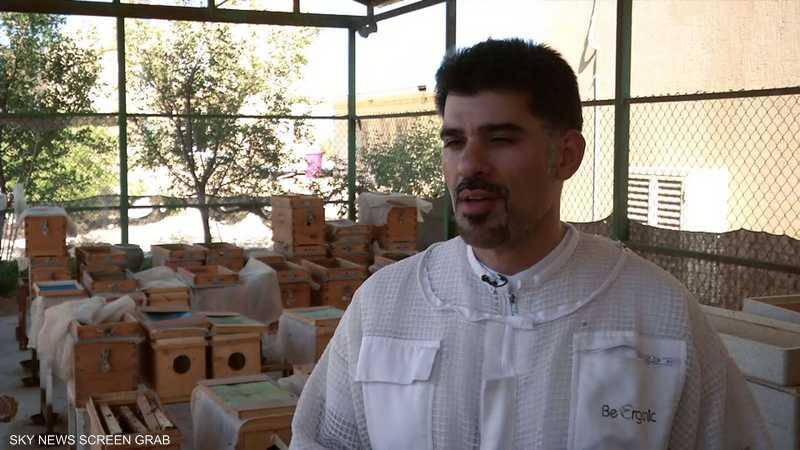 طبيب أسنان كويتي يجد علاجا ببطون النحل