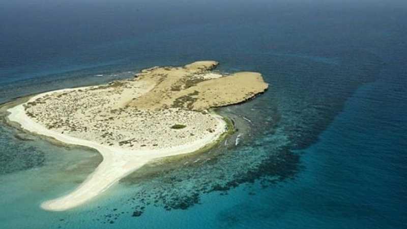كنز سعودي وسط البحر الأحمر ينتظر المستكشفين أخبار سكاي نيوز عربية