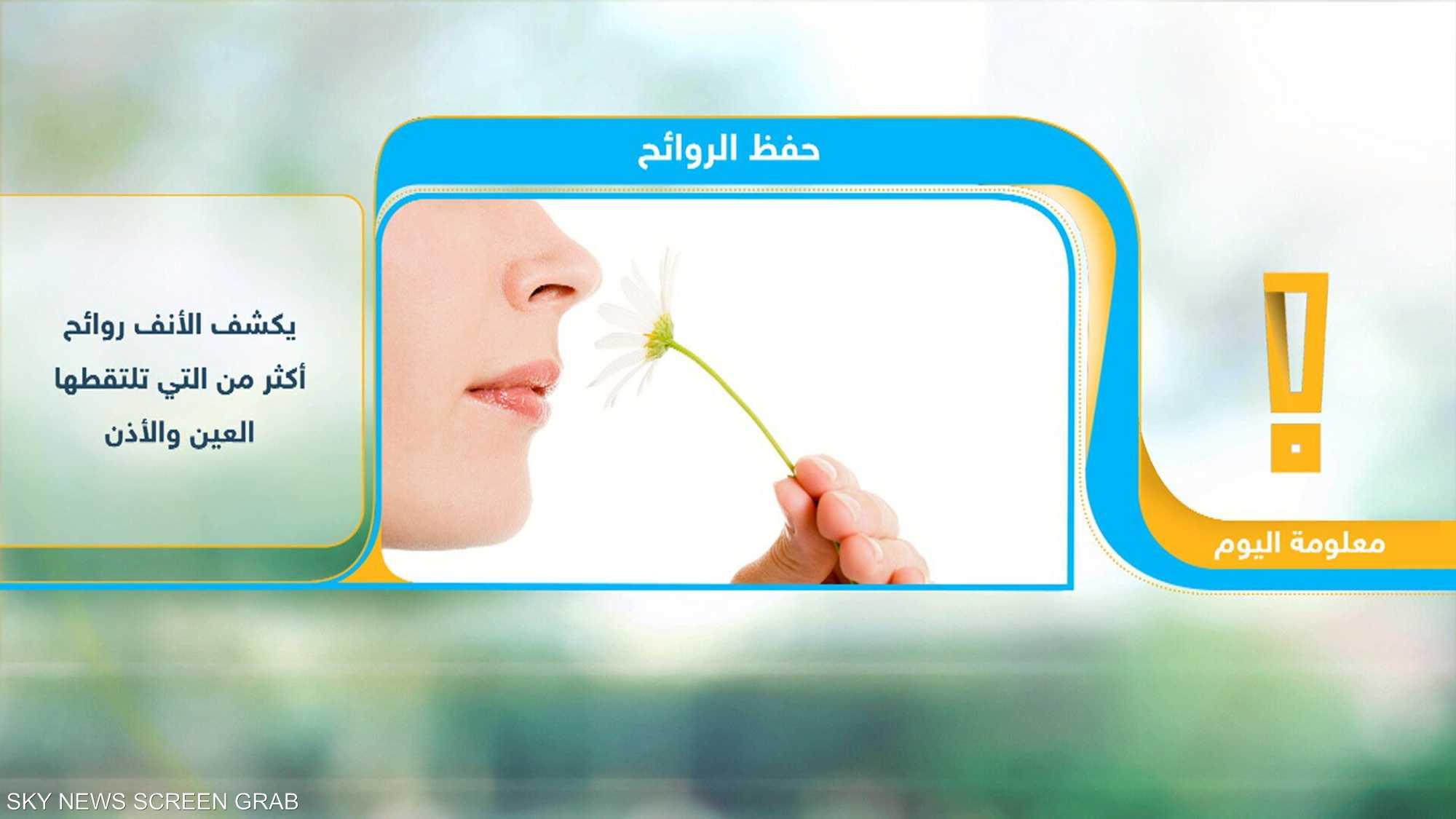 الأنف يميز تريليون رائحة