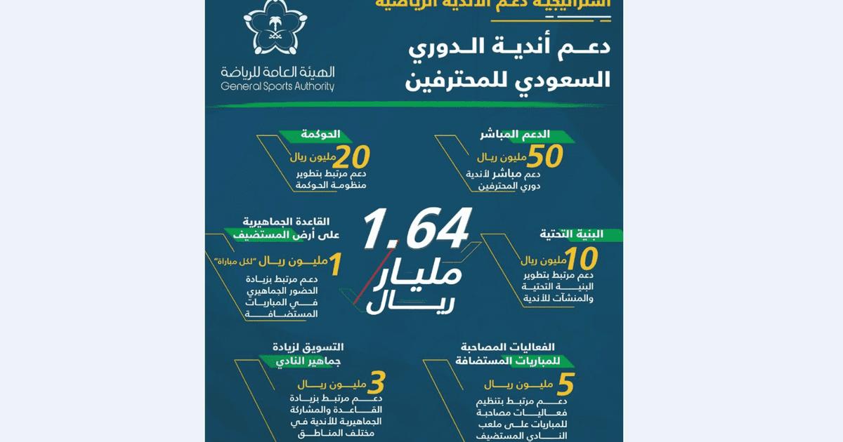 السعودية تعلن عن استراتيجية طموحة لدعم الأندية الرياضية   أخبار سكاي نيوز عربية