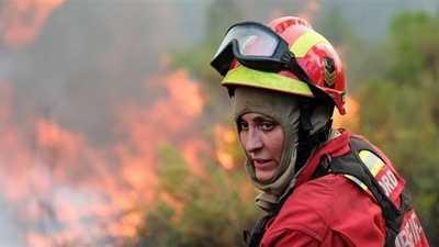 مئات رجال الإطفاء يكافحون حرائق الغابات وسط البرتغال