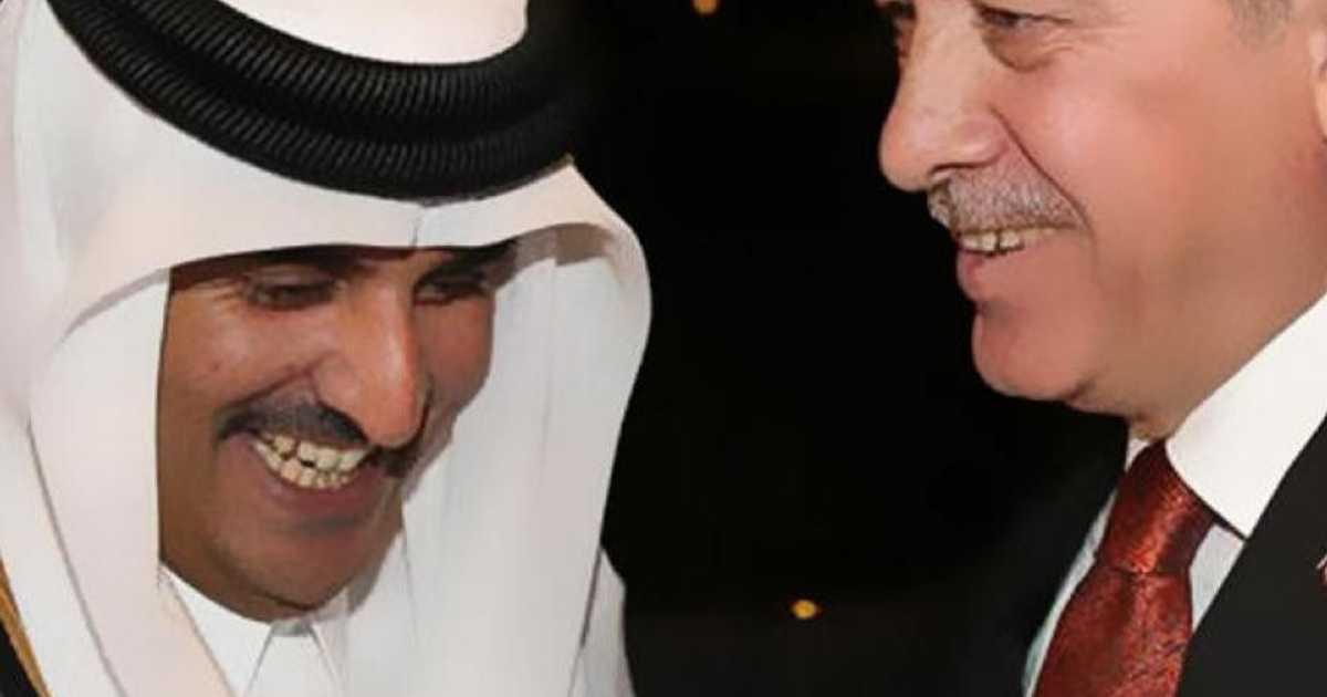 أمير قطر يسبح في  نبع أردوغان    أخبار سكاي نيوز عربية