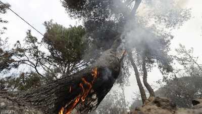 """حرائق لبنان تكشف """"عجز السلطات"""" وتكاتف المواطنين"""