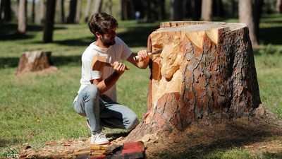 بالصور.. حين تتحول جذوع الأشجار إلى لوحات فنية