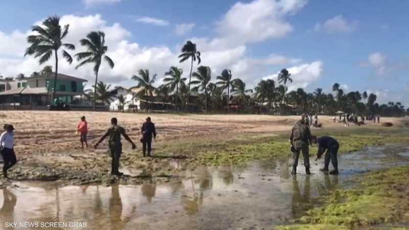 تلوث أجمل شواطئ البرازيل.. والسبب مجهول