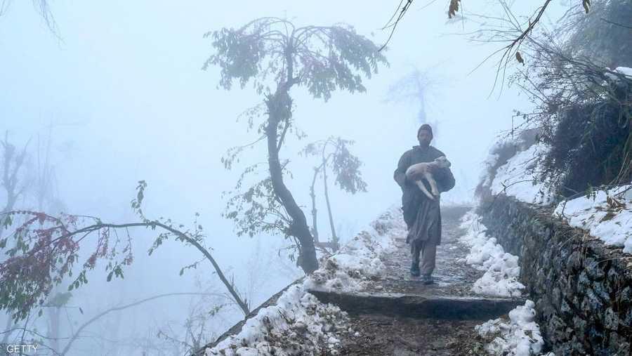 رجل يحاول حماية كلبه من الثلوج الشديدة في مقاطعة كشمير المتنازع عليها بين الهند وباكستان.