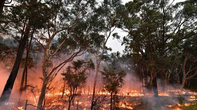 الحرائق تثير مخاوف بيئية كبيرة