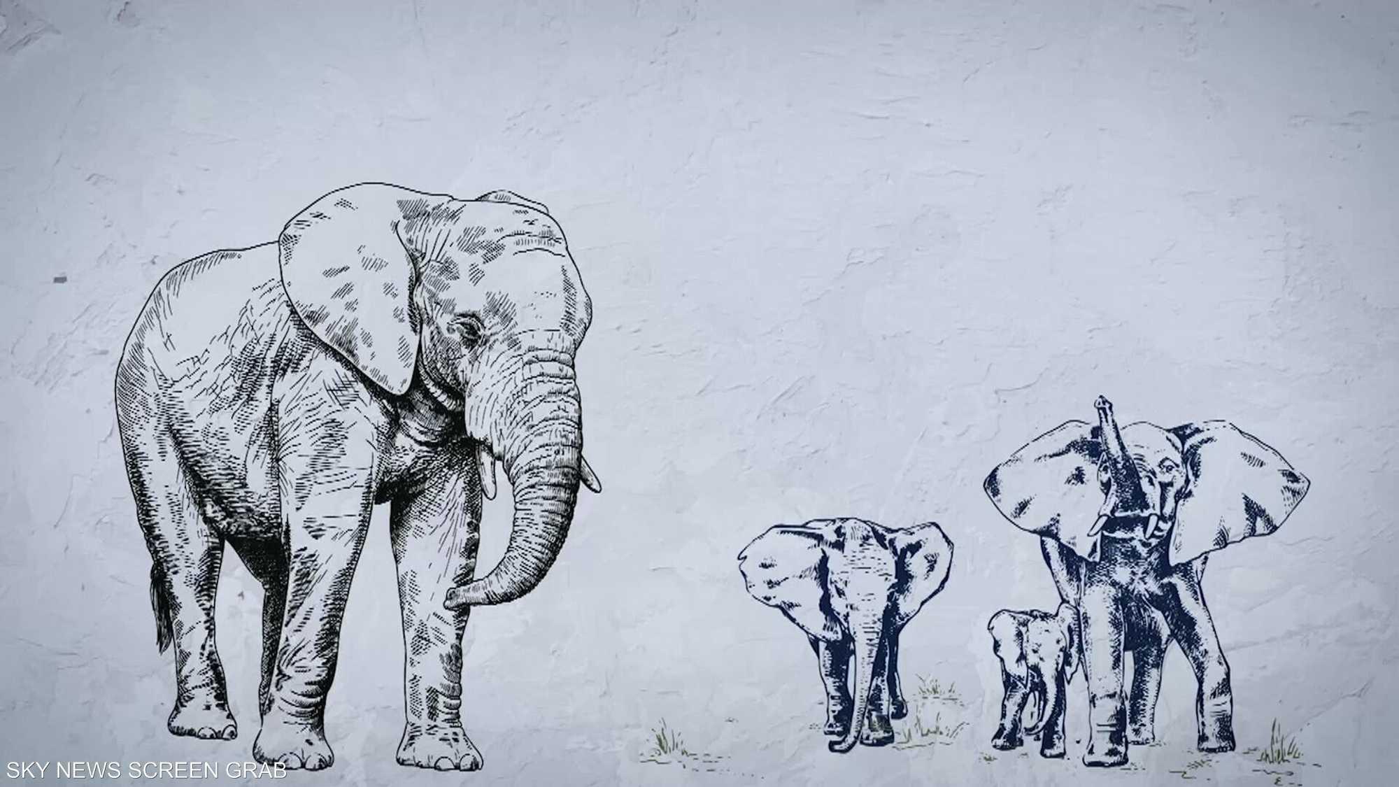 البشر يسيطرون على أضخم الحيوانات