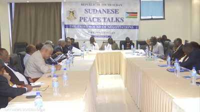 حركات دارفور المسلحة تستعد للانخراط في مفاوضات السلام