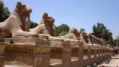 """حسم جدل """"كباش التحرير"""" في مصر.. وتحديد موقع العرض"""