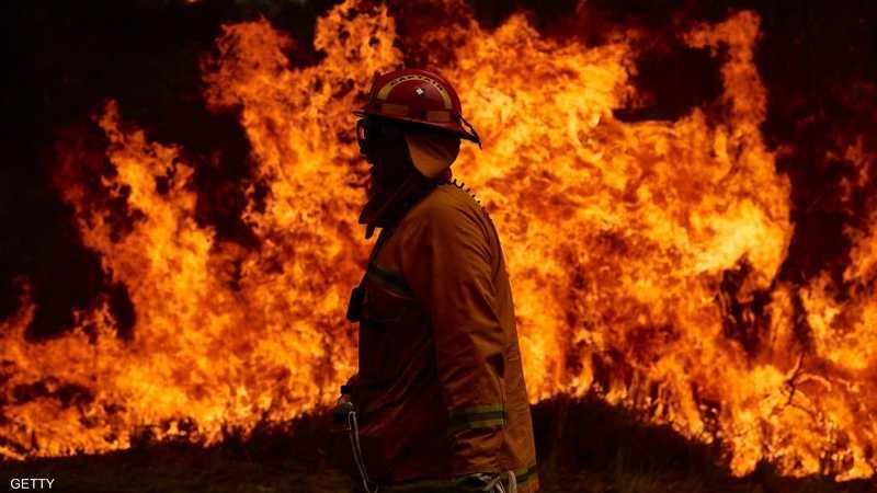 حرائق أستراليا دمرت الغابات