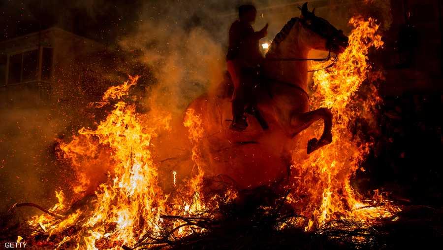 المهرجان يقام عشية يوم القديس أنتوني، شفيع الحيوانات في 16 يناير