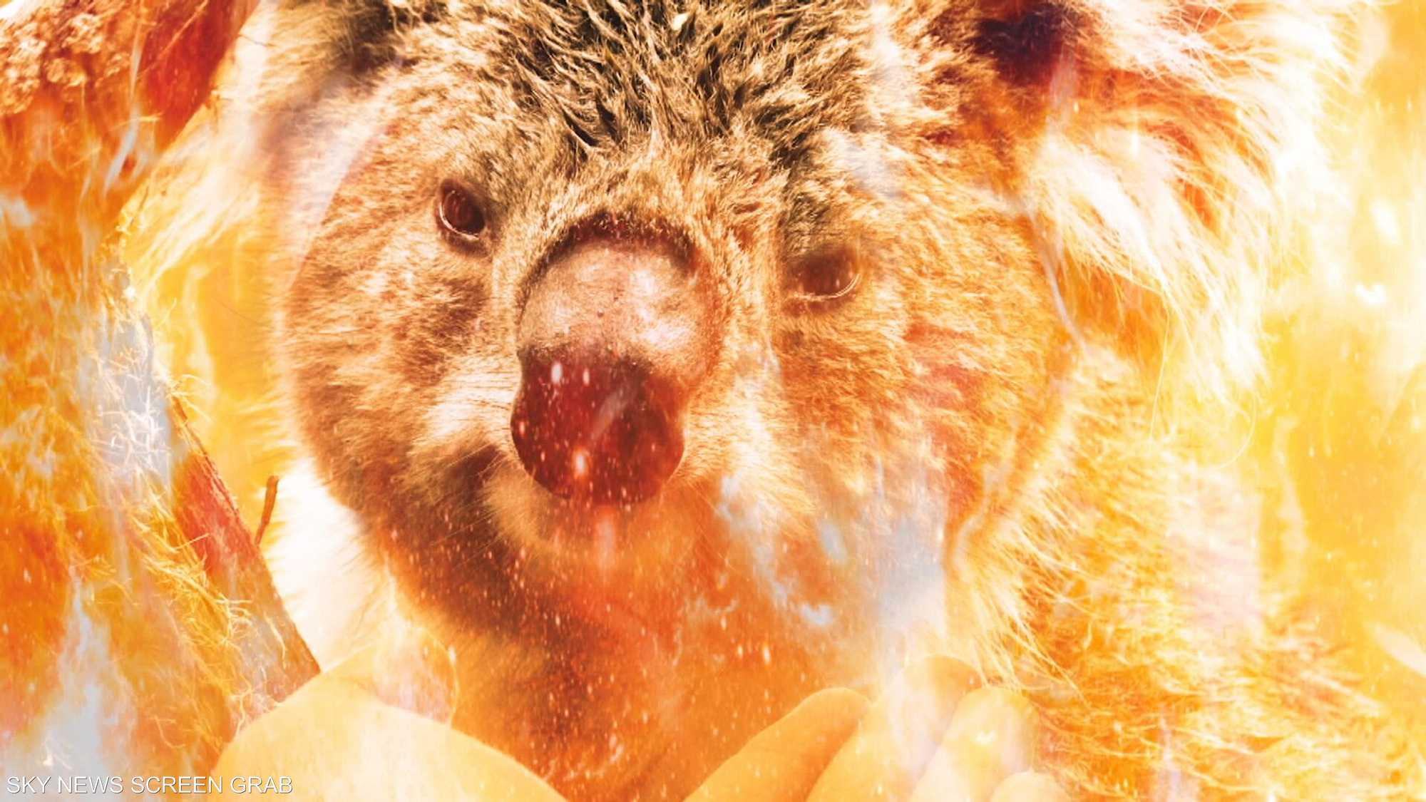 نفوق مليار كائن حي عقب حريق أستراليا