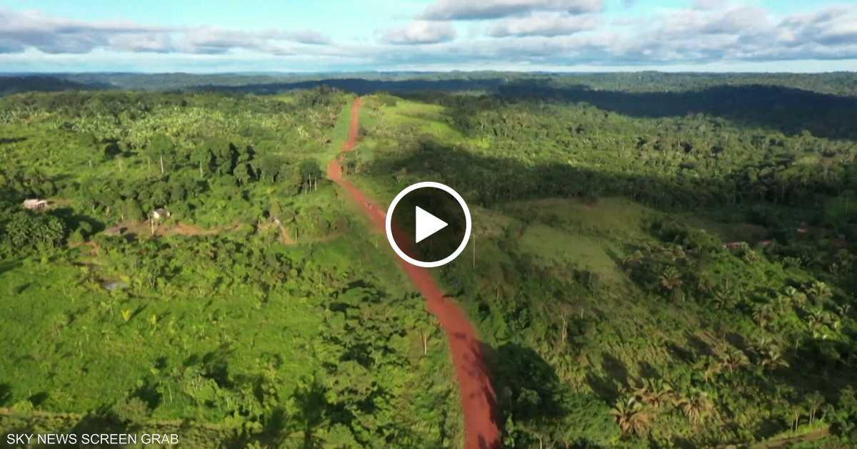 اختفاء غابات الأمازون خلال ربع قرن