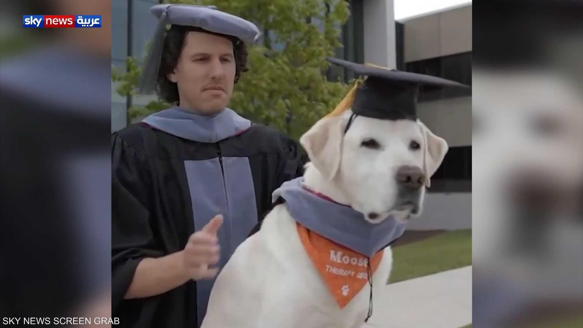جامعة أمريكية تمنح كلبا شهادة دكتوراة فخرية