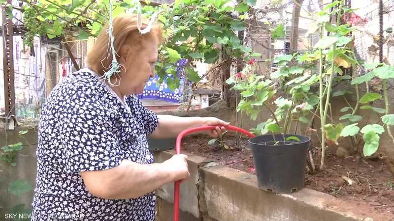 حملة في لبنان لتشجيع الأهالي على الزراعة المنزلية