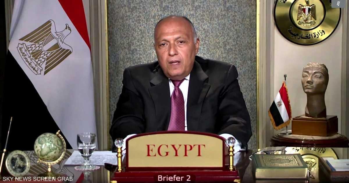 شكري لمندوب إثيوبيا: أرفض اتهاماتك وتدخلك في الشأن المصري