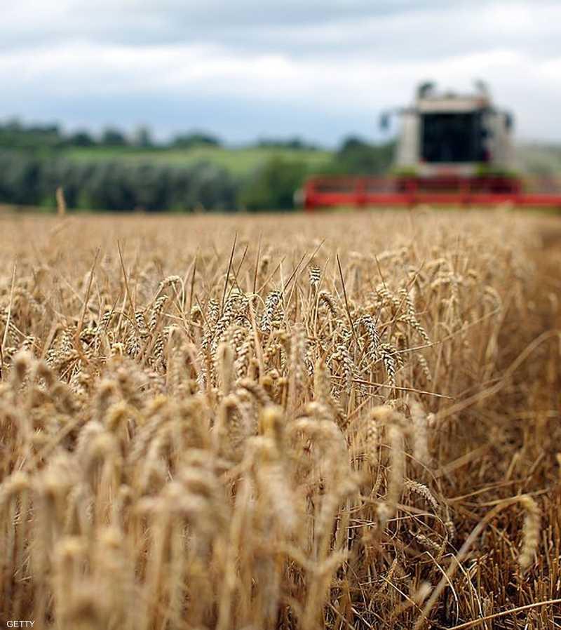 الظاهرة متخصصة في زراعة وإنتاج وبيع الأعلاف والسلع الغذائية