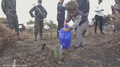 الجزائر.. حملة تشجير واسعة ردا على حرائق الغابات