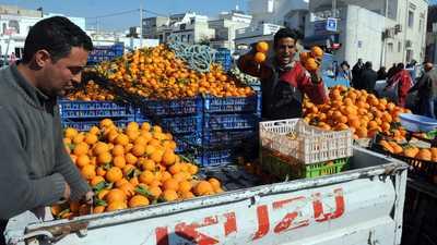 البرتقال التونسي.. زيادة في الإنتاج وصعوبات في التصدير